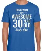 Awesome 30 year verjaardag cadeau t-shirt blauw heren