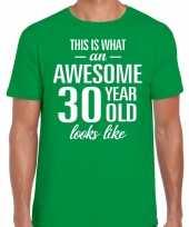 Awesome 30 year verjaardag cadeau t-shirt groen heren