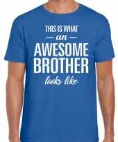 Awesome brother fun t-shirt blauw heren