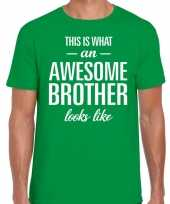 Awesome brother fun t-shirt groen heren