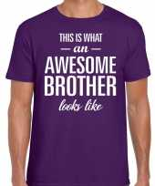 Awesome brother fun t-shirt paars heren