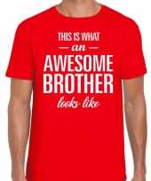 Awesome brother fun t-shirt rood heren