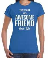 Awesome friend kado t-shirt blauw dames