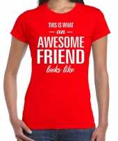 Awesome friend kado t-shirt rood dames