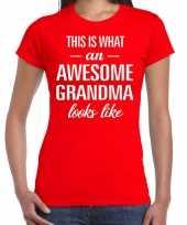 Awesome grandma cadeau t-shirt rood dames