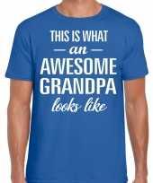 Awesome grandpa opa cadeau t-shirt blauw heren
