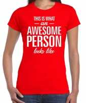 Awesome person cadeau t-shirt rood dames