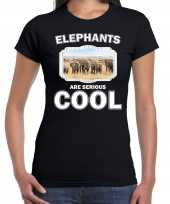 T shirt elephants are serious cool zwart dames kudde olifanten olifant-shirt