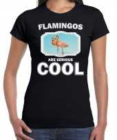 T shirt flamingos are serious cool zwart dames flamingo vogels flamingo shirt